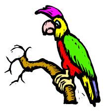 Papegøye